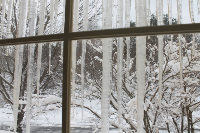 Icicle Cage