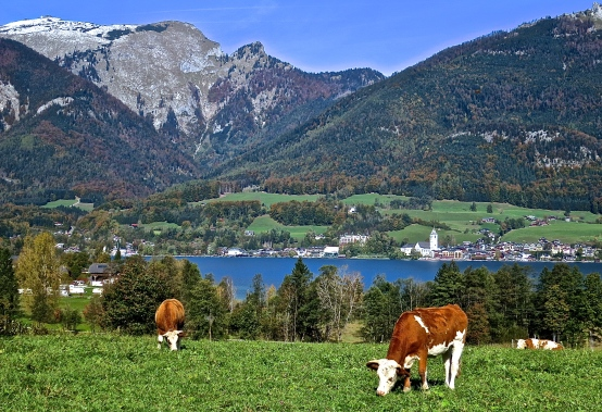 Lakes Region Of Austria
