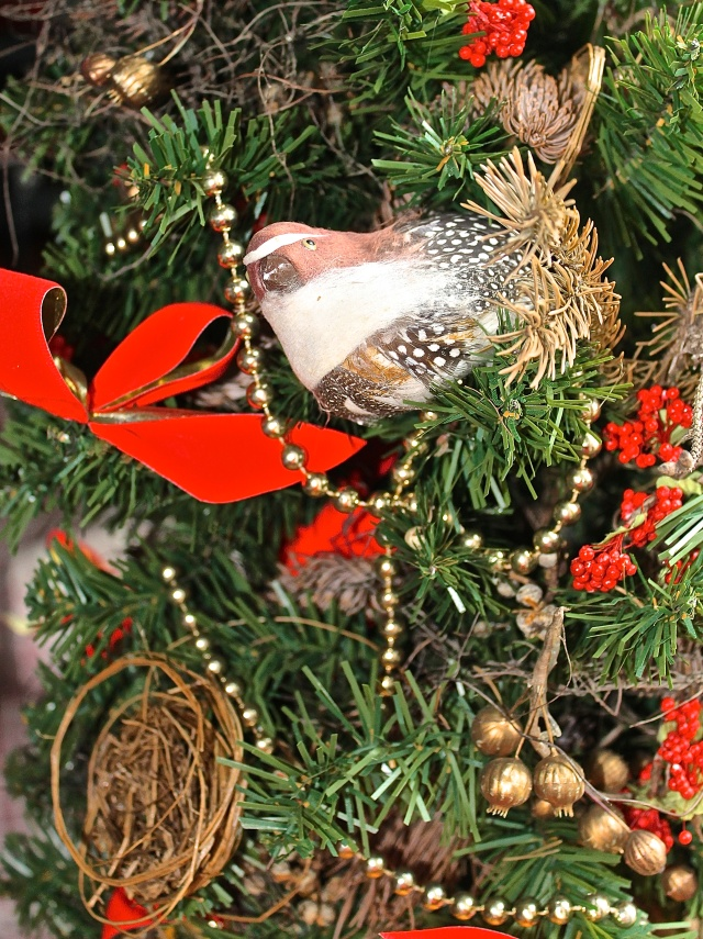 Christmas Tree Decorated With Birds And Nests