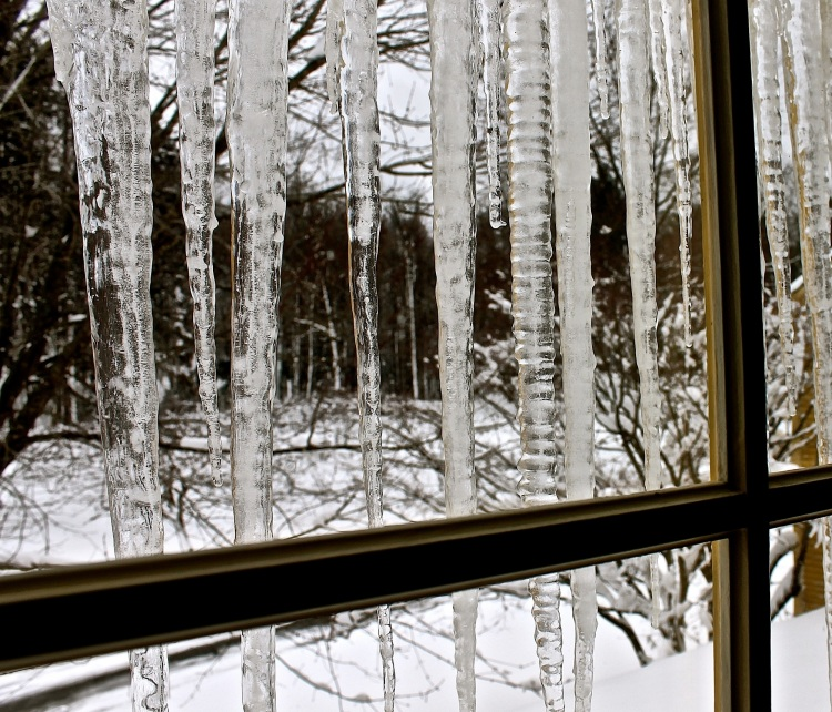 Icicles Cover The Windows