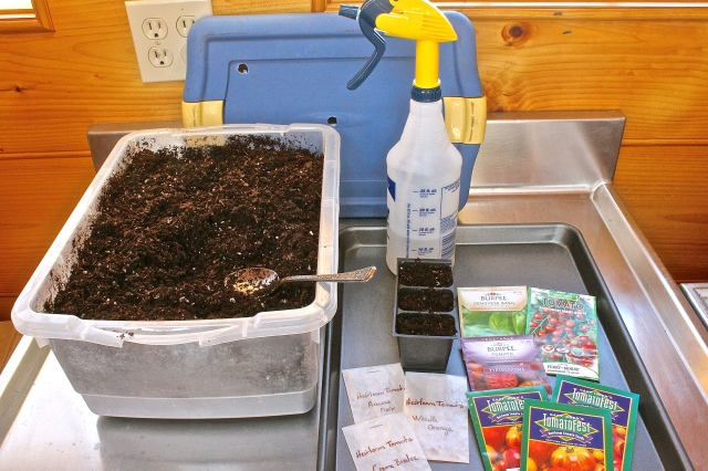 Everything Needed To Start Seeds
