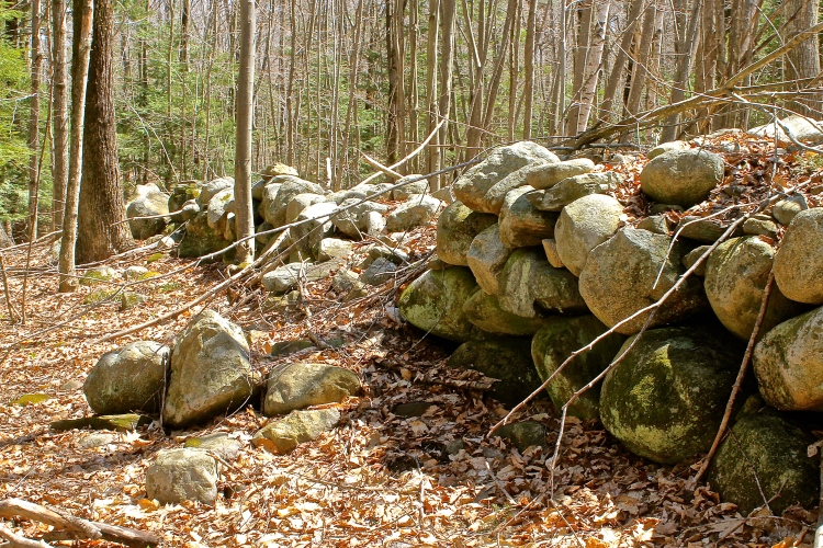 Tumbling Rock Wall In The Woods
