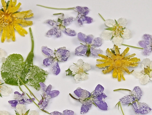 Candied Wildflowers