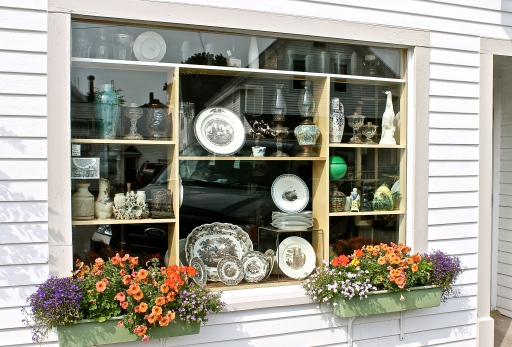 Window Shopping At An Antique Store