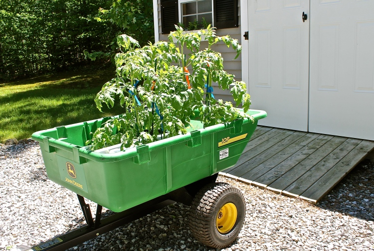 John Deere Wagon Used As  A Rolling Green House