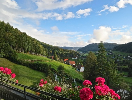 The Black Forest And Rolling Green Valleys