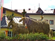 Straw Cows In The Center Of Town