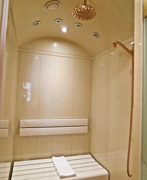 The Bathroom Shower/Sauna
