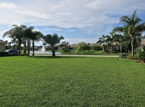 Our House Lot In Vero Beach Before Construction Started