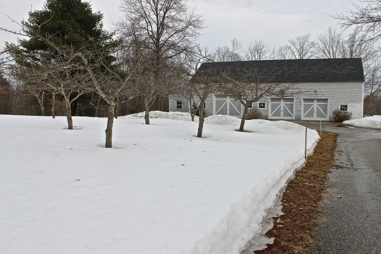 More Than A Foot Of Snow Still Covers The Orchard The First Week Of April