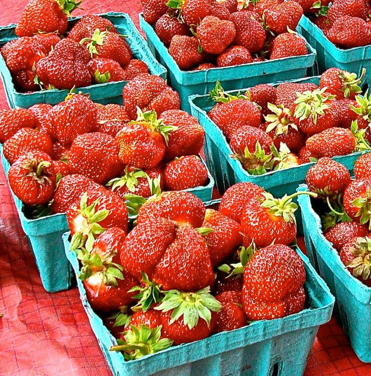 Sweet Summer Strawberries