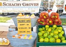 Vero Beach Citrus Fresh From The Grove