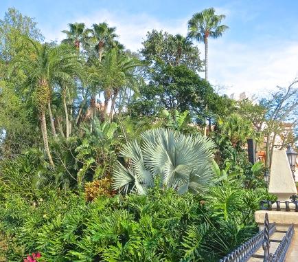 Lush Tropical Landscape Almost Hides Mexico's Pyramid