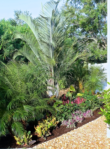 Tropical Gardens Make You Feel Like You Are On Vacation In Your Own Backyard