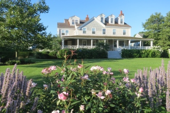 Roses Grow In Front Of A Nantucket Home