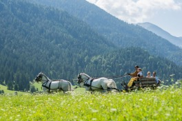 Enjoying The Outdoors From A Horse Drawn Wagon At The Post Hotel Achenkirch, Austria
