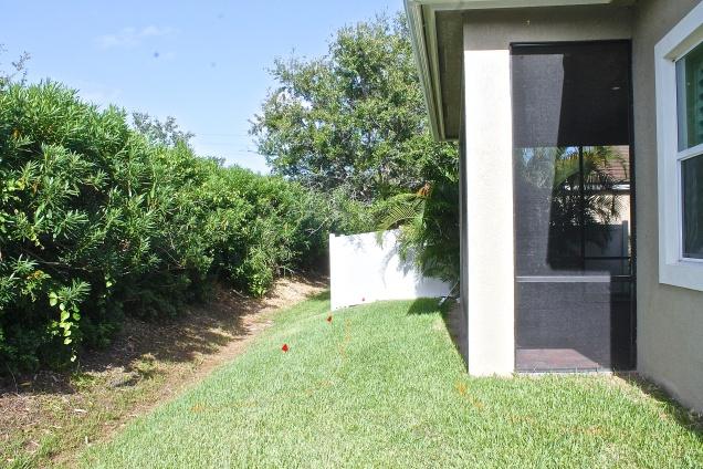 Our Tiny Backyard