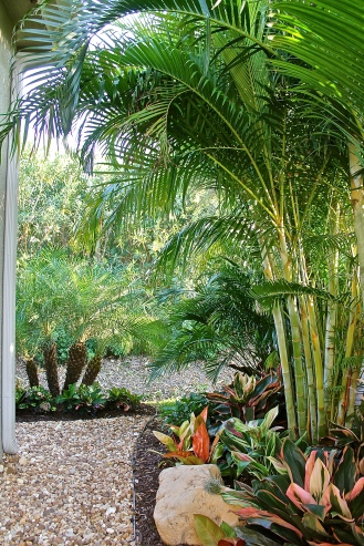 Shade Garden On The Side Of The Lanai