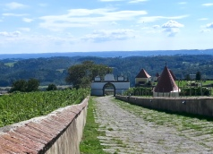 Riegersburg Castle Grounds And Vineyards