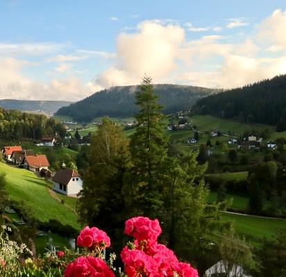 Scenic Black Forest