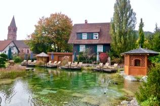 Natural Pool At Bareiss