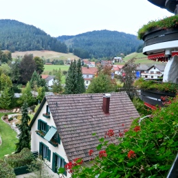 Looking Out At Baiersbronn-Mitteltal In The Black Forest
