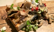 Porcini Mushroom And Chilli Bruschetta
