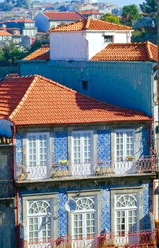 Blue Tiled Red Roofed Building