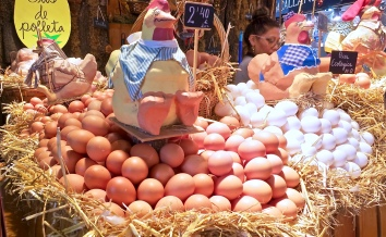 Fresh Eggs Of All Kinds