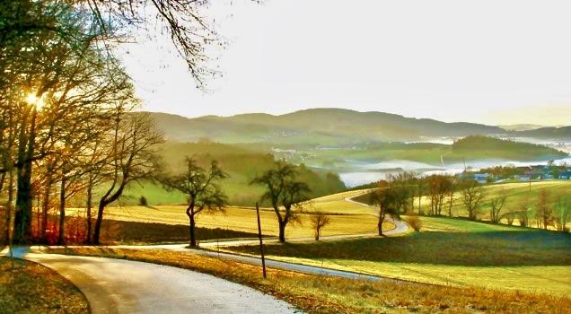 Beautiful Countryside Near Bavarian Forest