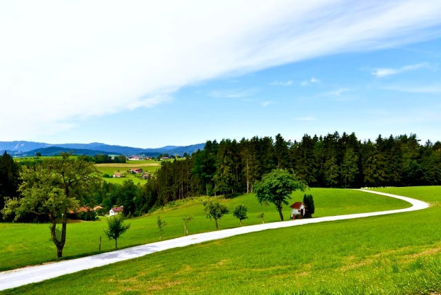 Bavarian Forest Countryside
