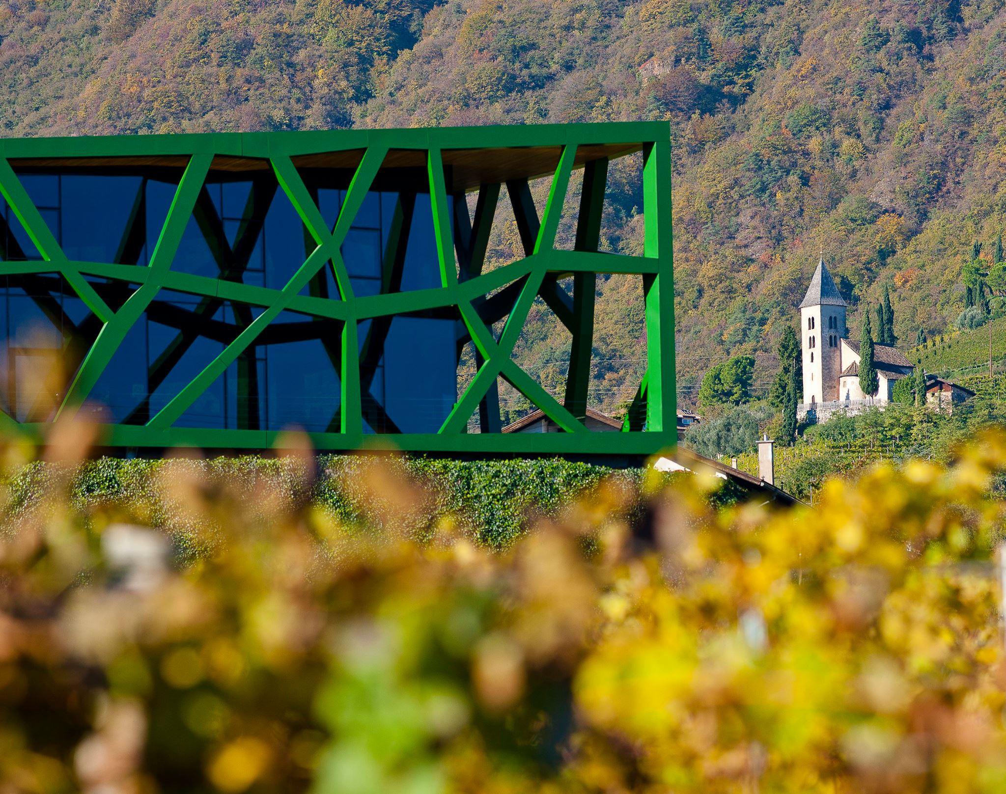 Tramin vineyards and winery