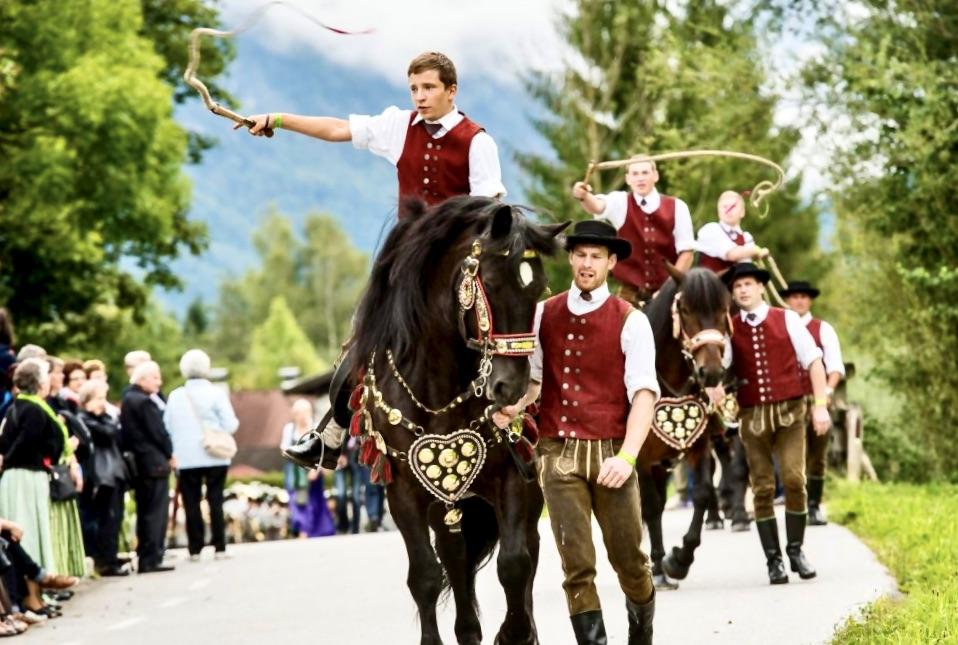 austrian mounted whip cracking club