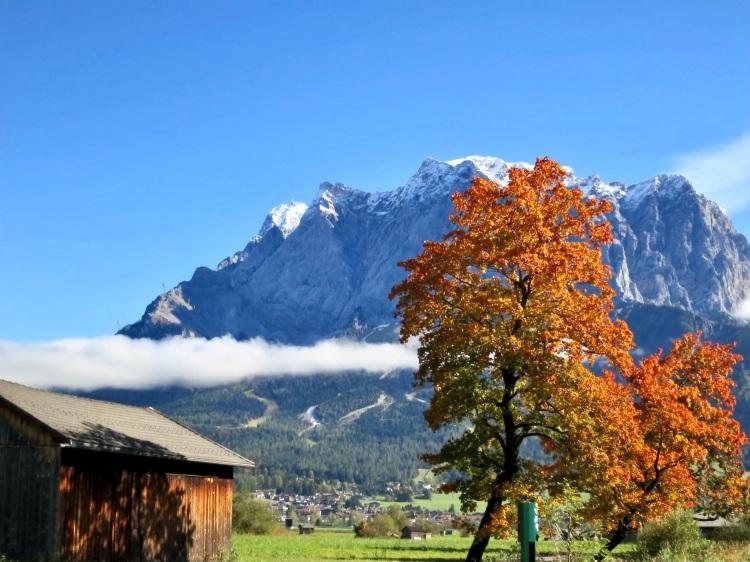 the golden days of autumn